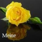 Getuigenissen van online medium Meine